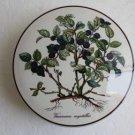 "Villeroy & Boch Botanica Bilberry Vacciniam Myrtillus 6"" Candy Box Porcelain"
