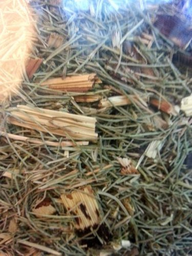 Horsetail tea leaves * equisetum arvense * Buy 2 Get 1 extra. Anti-oxidant Hemorrhoids