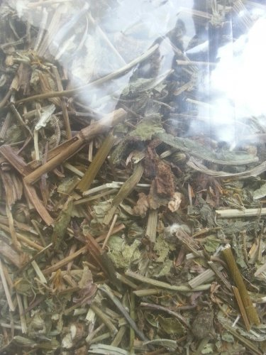 Dandelion leaves - tea infusion taraxacum officinale L - buy 2 get 1  Joints blood purifier