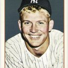 MICKEY MANTLE 2009 Topps 206 Checklist INSERT Card #2 New York Yankees FREE SHIPPING Baseball