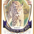 BOBCAT 2016 Topps Allen & Ginter Mascots In The Wild INSERT Card #MIW-1 ARIZONA DIAMONDBACKS 1