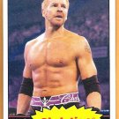 CHRISTIAN 2012 WWE Topps Heritage Wrestling Card #11 WWF Edge Christian Cage The Brood FREE SHIPPING