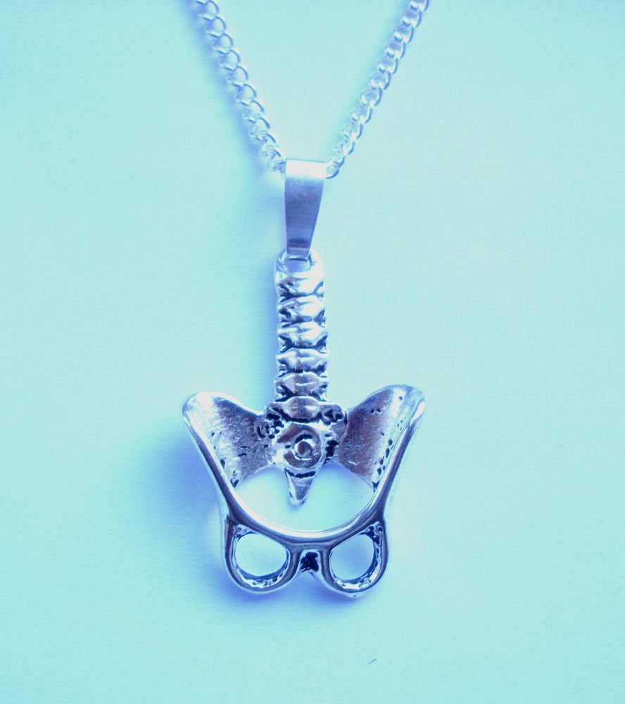 Pelvis & Spine Body Parts Pendant Necklace 18 inch chain