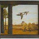 Ornithology Vintage Original Painting Autumn Landscape Flying Birds J Eifert