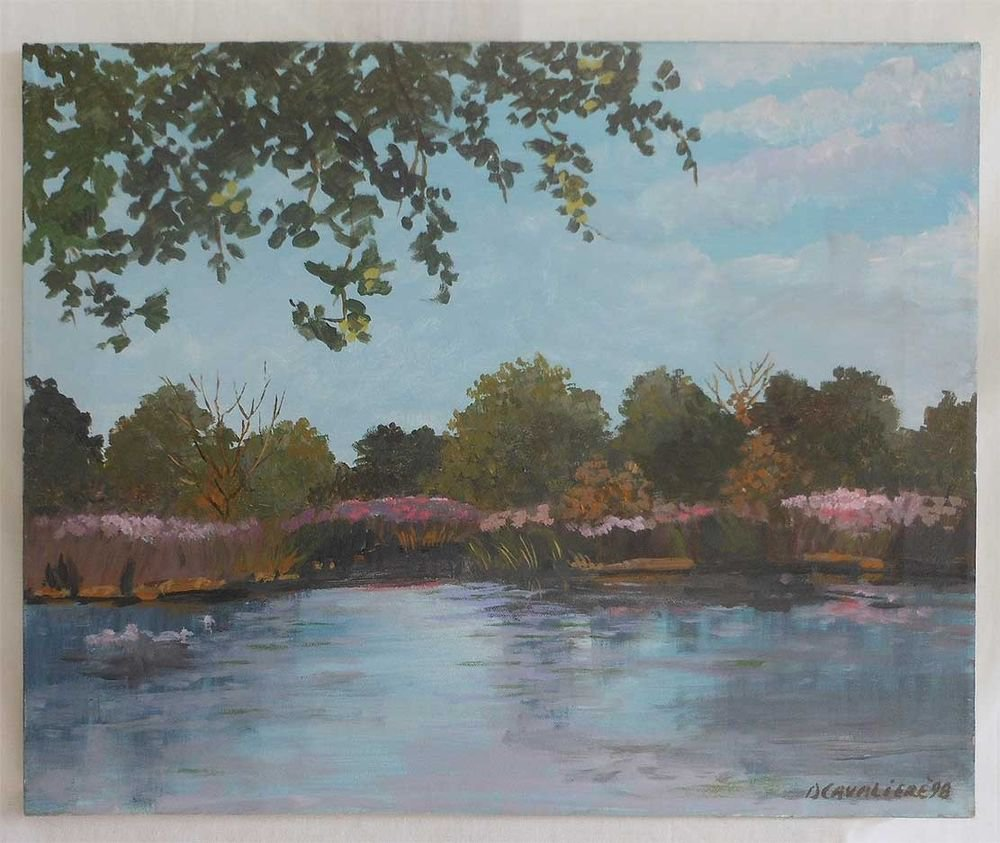 Ducks Ornithology Vintage Original Oil Painting Landscape Pond  D Cavaliere