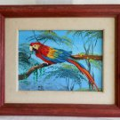 Ornithogy Painting Original Oil Wild Macaw Parrot Bird Jungle Tropical Alej