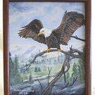 Painting American Bald Eagle Patriotic Ornithology Western Mountain Williams