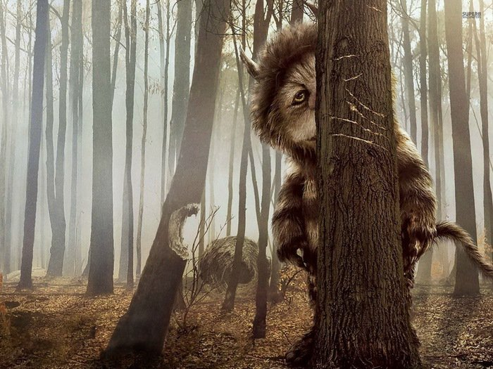 Where The Wild Things Are Fantasy Drama Adventure Movie 32x24 Print POSTER