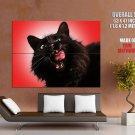 Black Cat Tongue Yawning Animal HUGE GIANT Print Poster