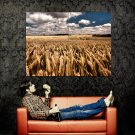 Wheat Field Cloudy Sky Nature Landscape Huge 47x35 Print POSTER