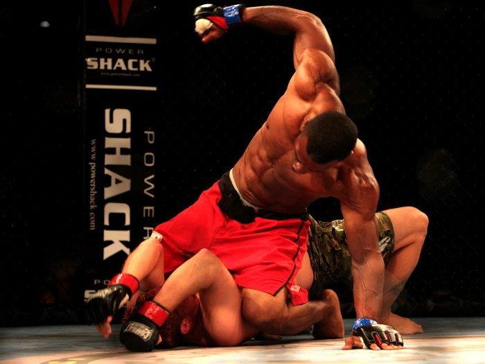 essays on mixed martial arts