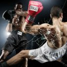 KNOCKOUT Boxing Everlast Cool Art 32x24 Print Poster