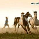 Into The Wild Horses Movie 32x24 Print Poster