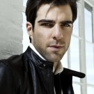 Zachary Quinto Movie Actor 32x24 Print Poster