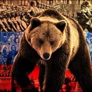 Russian Bear Flag Power Mood 16x12 Print Poster