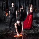 The Vampire Diaries Characters Cast 16x12 Print Poster