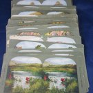 39 Stereoview Cards of the Holy Land Series in color 1904 T.W. Ingersoll