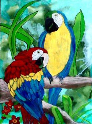 Macaw Parrots, 20 x 24