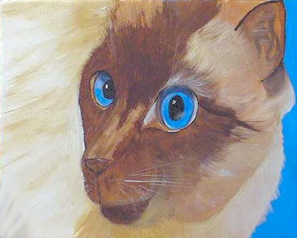 Siamese Cat Portrait, ready to hang