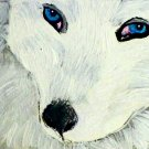 ACEO White Arctic Fox