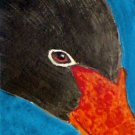 ACEO Black Swan Face