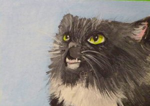 ACEO Baddist Cat