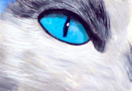 ACEO Blue Cat Eye
