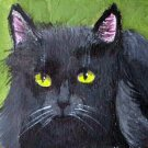 ACEO Black Cat