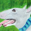 ACEO Bull Terrier Dog