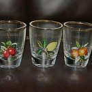 NICE RETRO 1960'S 5 GLASS SET FRUIT DESIGN WHISKY LIQUER GLASSES