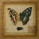 Postscript Butterfly II