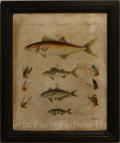 Pisces II