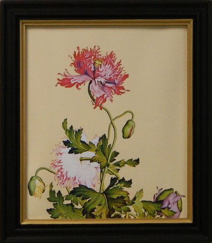 Erna's Botanical I
