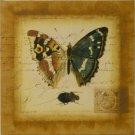Small Postscript Butterfly II