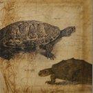 Tandem Tortoise I