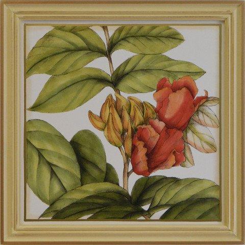 Tropical Blooms III