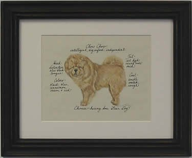 Chow Chow, Red