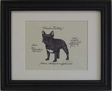 French Bulldog, Brindle