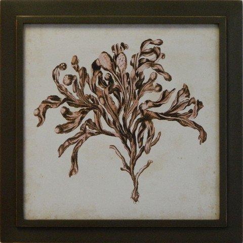 Vintage Seaweed II