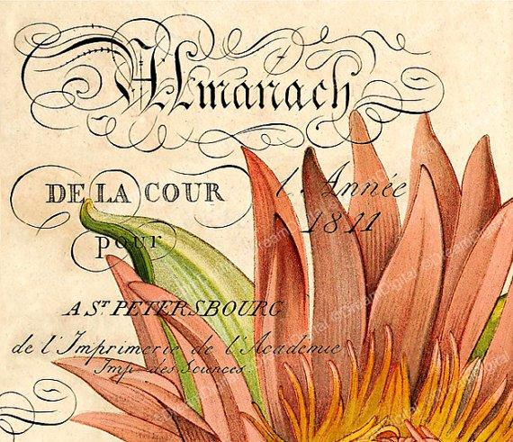 Printable French Ephemera, Digital Paper, Vintage Illustration, Paris D cor