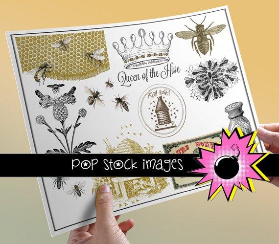 Bees & Beekeeping-Honey-Queen Bee Collage Sheet-Digital Img. of Bees Bee Hives-