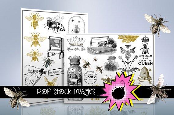Bees - Hives - Honey & Beekeeping Digital Img. - 300 Image Bumblebee Collection