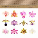 Flowers Clip Art-Collage Sheet-Orchids II-Scrapbook GraphicEmbellishmentsElementsCards