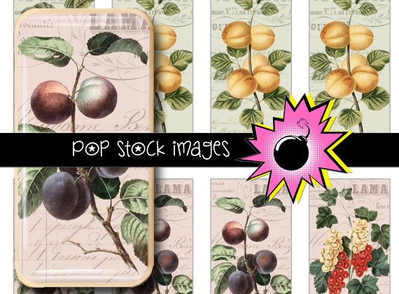 French Invoices Fruit Digital Domino Collage Sheet-print Tiles for Pendants