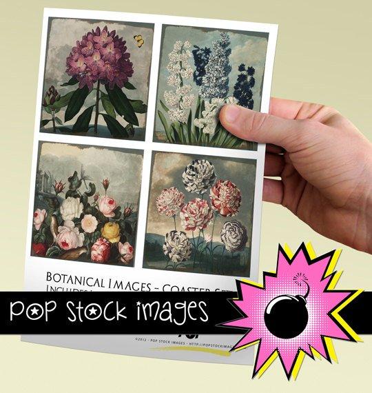 Vintage Botanical Print Coasters-3.8' square Digital Img.-Img.Supply List
