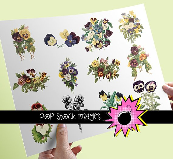 PANSY Blooms Assortment - 12 INDIVIDUAL Assorted vintage print