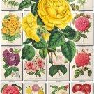 FLOWERS-109 250 vintage print