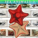 SEA ANIMALS-3 165 vintage print