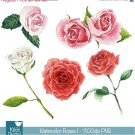 Watercolor Roses I Clipart - H, Painted, card design, watercolor, h, drawn