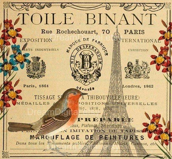 Printable Paris Decor, Bird Illustration, Digital Paper, French Ephemera